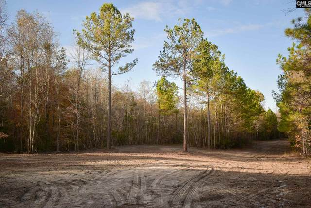 1018 Mule Rd, Elgin, SC 29045 (MLS #506864) :: Loveless & Yarborough Real Estate