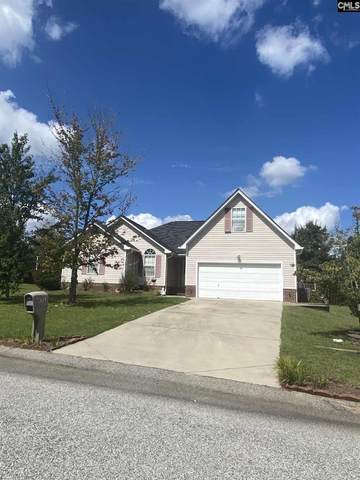 153 Dempsey Drive, Lexington, SC 29073 (MLS #507243) :: EXIT Real Estate Consultants