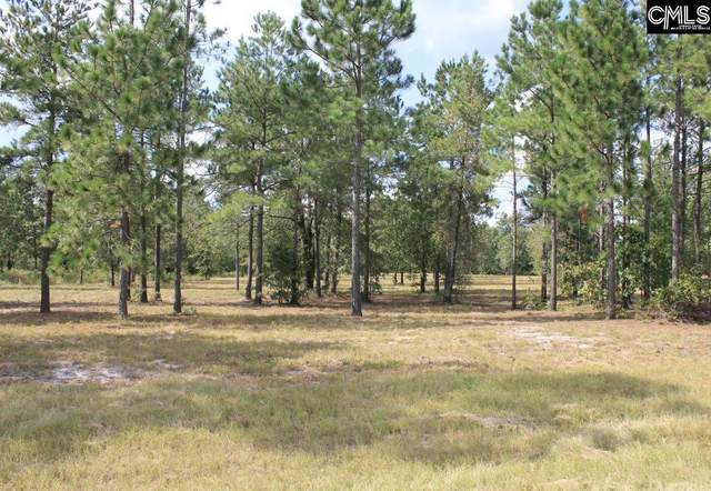 378 Hound Hollow Road, Camden, SC 29020 (MLS #507482) :: EXIT Real Estate Consultants