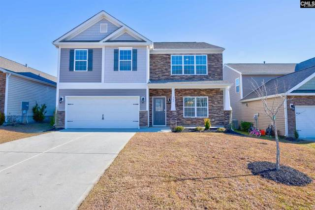 362 Explorer Drive, Chapin, SC 29036 (MLS #507697) :: Loveless & Yarborough Real Estate