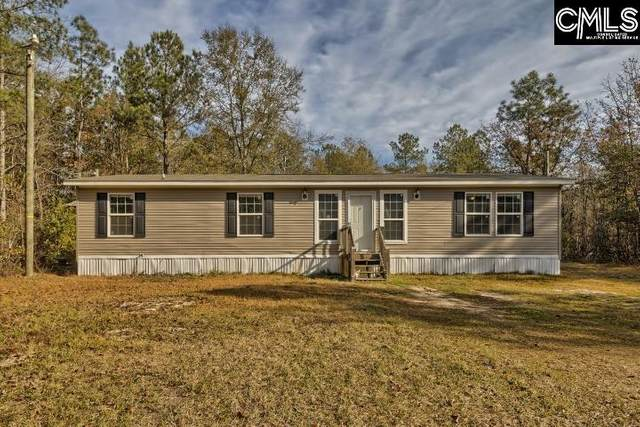 145 Catherine Drive, Pelion, SC 29123 (MLS #507709) :: The Olivia Cooley Group at Keller Williams Realty