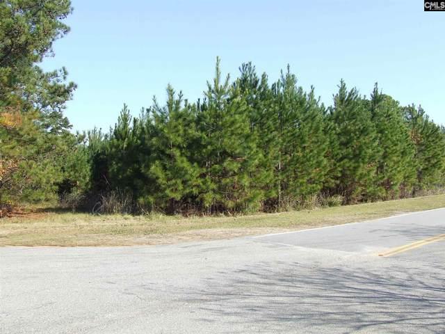 1013 N. Wingard Road, Irmo, SC 29063 (MLS #507800) :: Home Advantage Realty, LLC