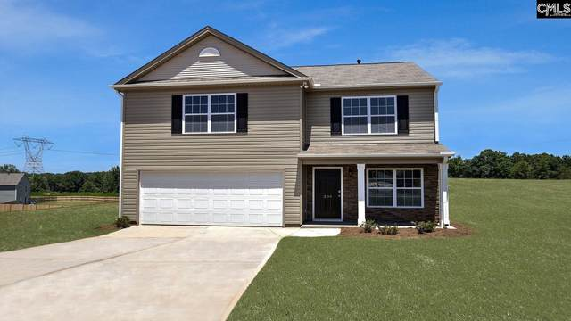 211 Heathrow Way, Lexington, SC 29073 (MLS #507960) :: EXIT Real Estate Consultants