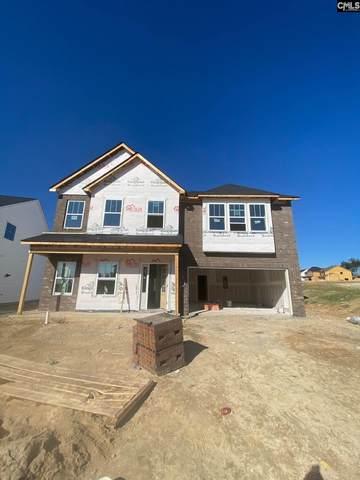 1014 Turtle Stone Road, Blythewood, SC 29016 (MLS #507976) :: Loveless & Yarborough Real Estate