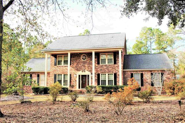 230 Spring Valley Road, Columbia, SC 29223 (MLS #508028) :: EXIT Real Estate Consultants