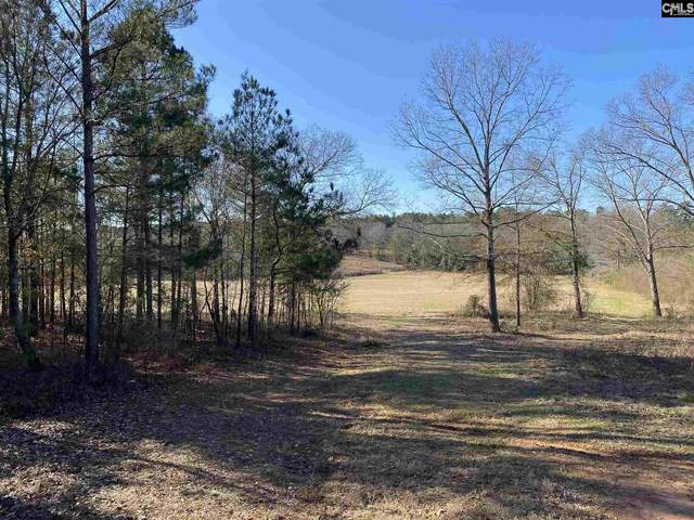 96 Old Indian Trail, Wagener, SC 29164 (MLS #508043) :: The Latimore Group