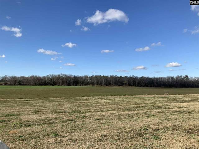 Off Heatwole Road, Other, SC 29042 (MLS #508488) :: The Latimore Group