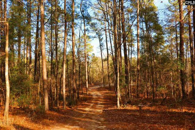 TBD Edisto Lake Road, Wagener, SC 29164 (MLS #508505) :: EXIT Real Estate Consultants