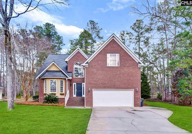 580 Wateroak Trail, Chapin, SC 29036 (MLS #508628) :: EXIT Real Estate Consultants
