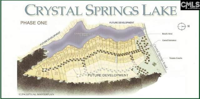 Lot 27 Living Waters Boulevard #27, Lexington, SC 29073 (MLS #508709) :: EXIT Real Estate Consultants