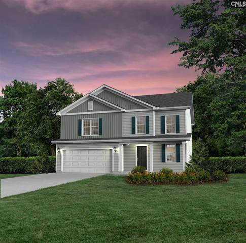 109 Bowyer Lane, Chapin, SC 29036 (MLS #508877) :: Disharoon Homes