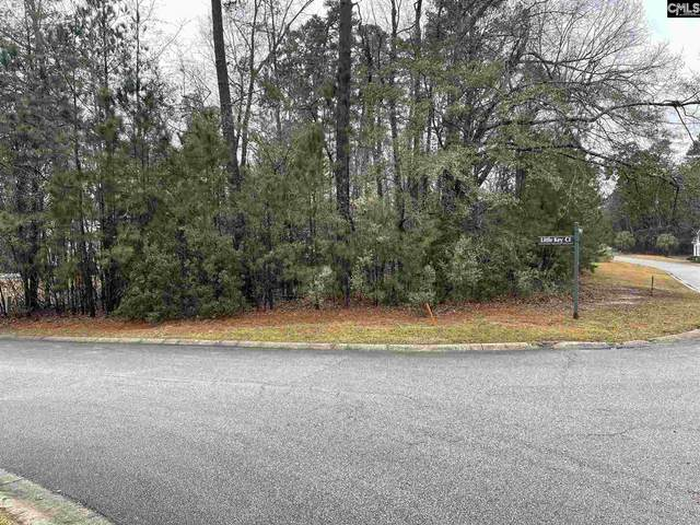 400 Little Key Court, Chapin, SC 29036 (MLS #508987) :: NextHome Specialists