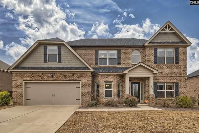 233 Cayden Court, Chapin, SC 29036 (MLS #509054) :: Disharoon Homes