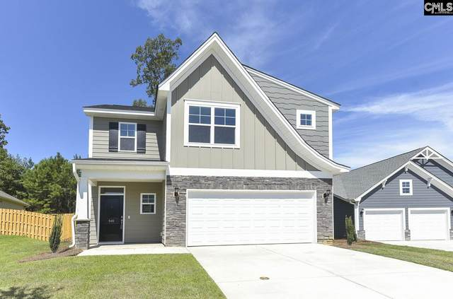 386 Amalfi Drive 35, Chapin, SC 29036 (MLS #509161) :: Metro Realty Group