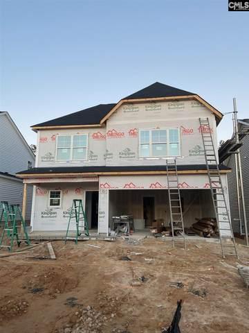 727 South Sage Drop Road, Blythewood, SC 29016 (MLS #509181) :: Disharoon Homes