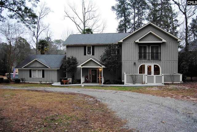 1073 Point View Road, Chapin, SC 29036 (MLS #509215) :: The Olivia Cooley Group at Keller Williams Realty