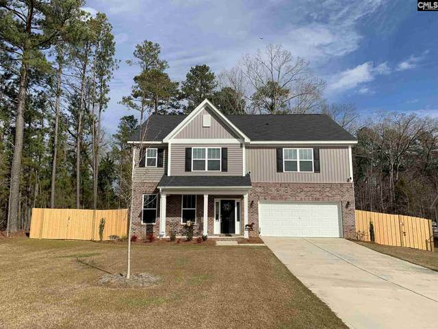 107 Eunice Ct, Chapin, SC 29036 (MLS #509323) :: Home Advantage Realty, LLC