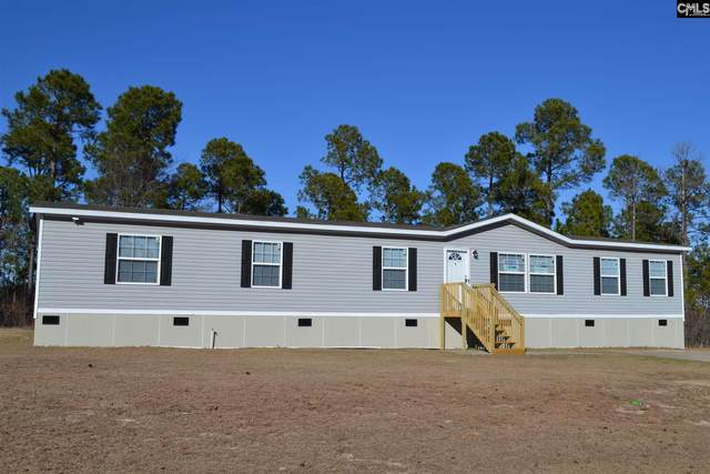 327 Peeler Court, Gaston, SC 29053 (MLS #509417) :: Home Advantage Realty, LLC