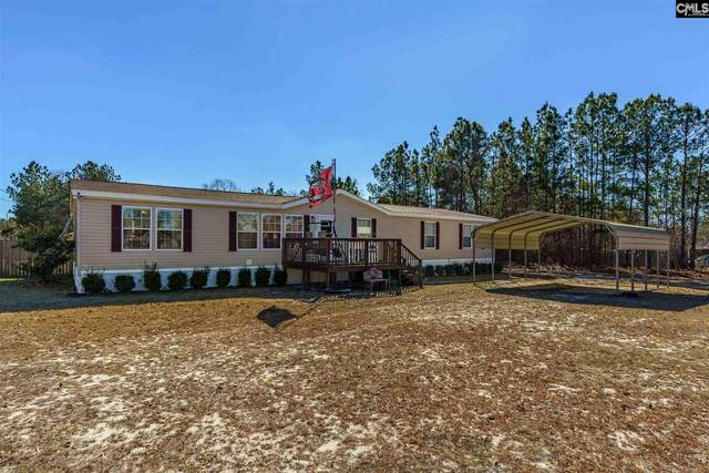 325 Hass Lucas Road, Gaston, SC 29053 (MLS #509460) :: Home Advantage Realty, LLC