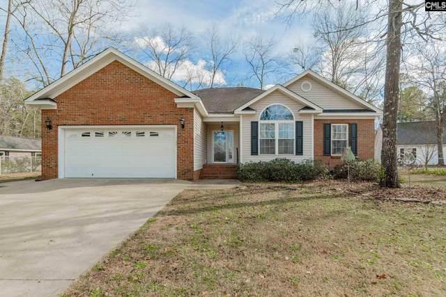 137 Cobbler Lane, Gilbert, SC 29054 (MLS #509463) :: EXIT Real Estate Consultants