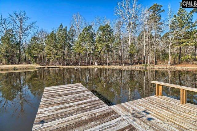 114 John Kinard Circle, Chapin, SC 29036 (MLS #509793) :: EXIT Real Estate Consultants