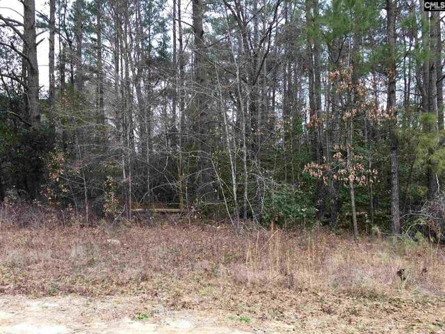 101 Meadow Lane Lot 1, Eastover, SC 29044 (MLS #509831) :: EXIT Real Estate Consultants