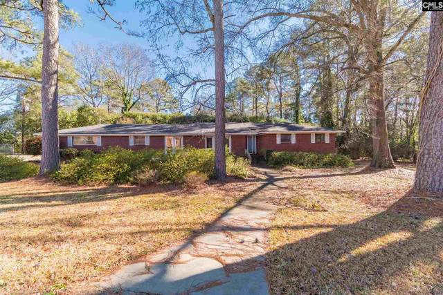 133 Lawand Drive, Columbia, SC 29210 (MLS #509978) :: Resource Realty Group
