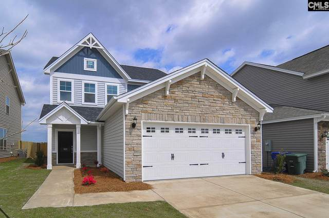 862 Bergenfield Lane 125, Chapin, SC 29063 (MLS #510037) :: EXIT Real Estate Consultants