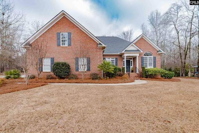 117 Lake Tide Drive, Chapin, SC 29036 (MLS #510090) :: The Latimore Group