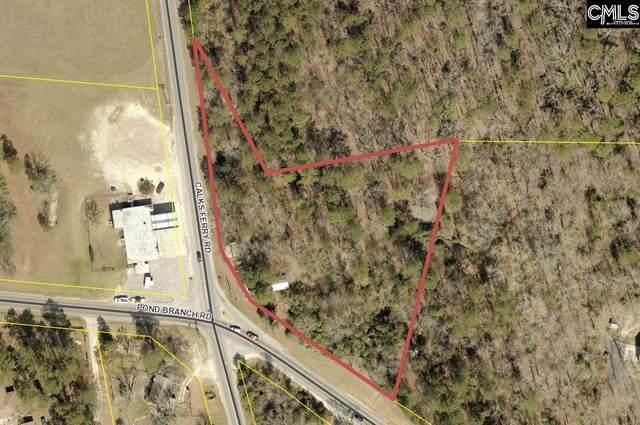 570 Pond Branch Road, Lexington, SC 29073 (MLS #510155) :: EXIT Real Estate Consultants