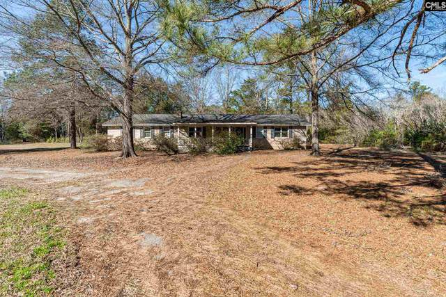 2240 Wessinger Road, Chapin, SC 29036 (MLS #510386) :: EXIT Real Estate Consultants