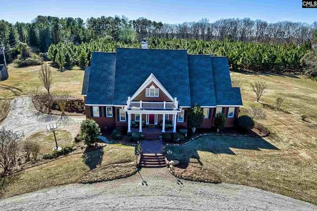 1318 Hendrix Landing Road, Lexington, SC 29072 (MLS #510445) :: EXIT Real Estate Consultants