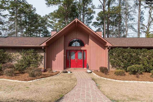 210 Dutchman Shores Circle, Chapin, SC 29036 (MLS #510524) :: NextHome Specialists