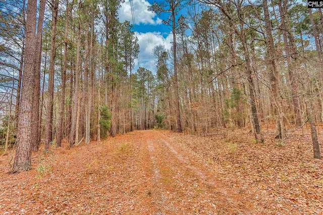 432 Amicks Ferry Road, Chapin, SC 29036 (MLS #510649) :: Resource Realty Group