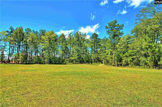 717 Ruskin Drive, Chapin, SC 29036 (MLS #510736) :: Resource Realty Group