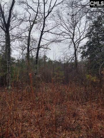 TBD Detsata Trail, Eastover, SC 29044 (MLS #510877) :: Yip Premier Real Estate LLC