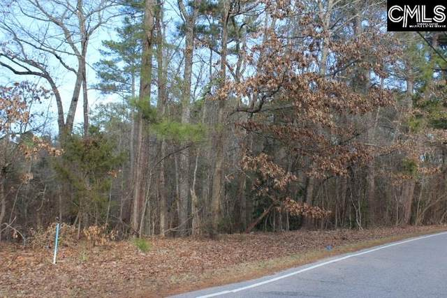 1 Big Thursday Court, Chapin, SC 29036 (MLS #510909) :: The Olivia Cooley Group at Keller Williams Realty