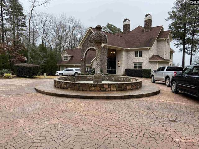 617 Mallard Drive, Chapin, SC 29036 (MLS #510928) :: EXIT Real Estate Consultants