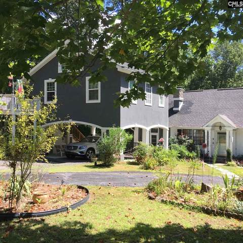 1320 Libby Ariail Circle, Chapin, SC 29036 (MLS #510980) :: EXIT Real Estate Consultants
