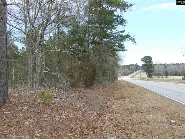 Old State Road, Swansea, SC 29160 (MLS #511127) :: EXIT Real Estate Consultants