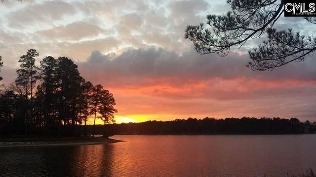 Lot 104 Edisto Lake Road Lot 104, Wagener, SC 29164 (MLS #511160) :: Resource Realty Group