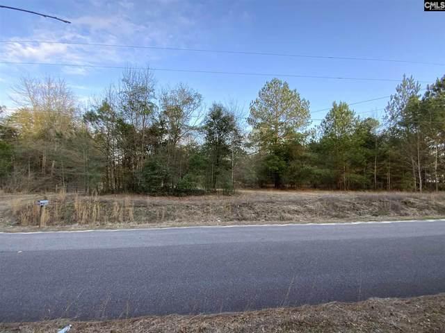 219 Washington Road, Wagener, SC 29164 (MLS #511247) :: Home Advantage Realty, LLC