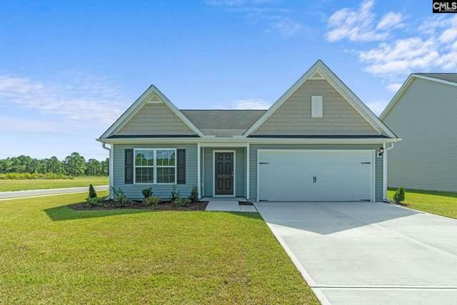 258 Common Reed Drive, Gilbert, SC 29054 (MLS #511271) :: Home Advantage Realty, LLC