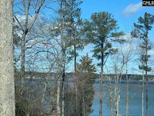 423 Vanway Point, Leesville, SC 29070 (MLS #511439) :: Home Advantage Realty, LLC