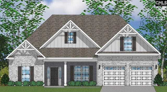 2117 Ludlow Place 327, Chapin, SC 29036 (MLS #511478) :: Resource Realty Group