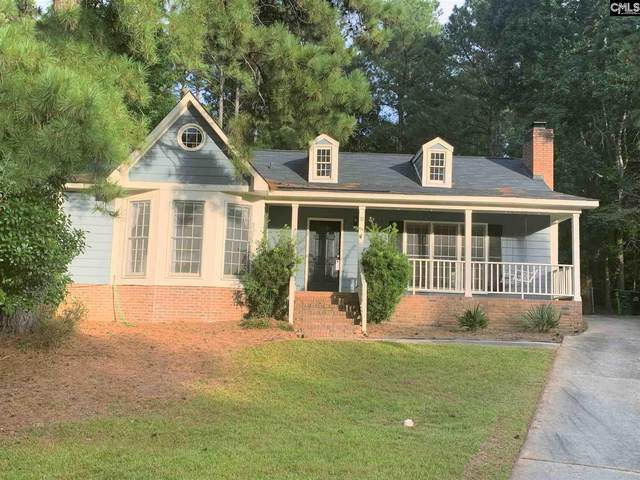 52 Old Well Road, Irmo, SC 29063 (MLS #511806) :: EXIT Real Estate Consultants
