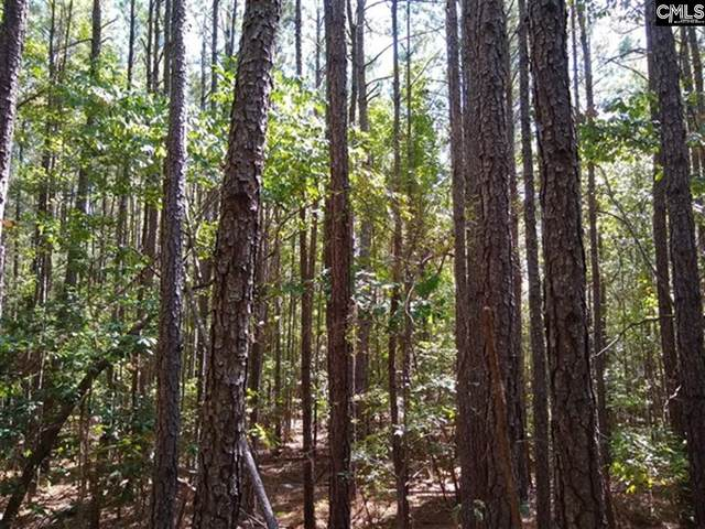 0 Long View Road, Cross Hill, SC 29332 (MLS #511969) :: EXIT Real Estate Consultants