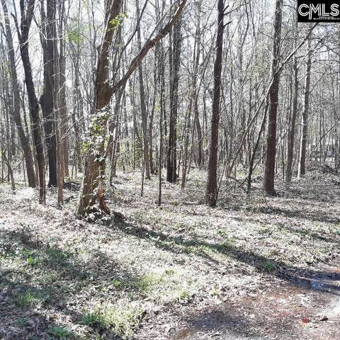 Lot 9.50 Charter Court #9.50, Columbia, SC 29209 (MLS #512125) :: The Olivia Cooley Group at Keller Williams Realty