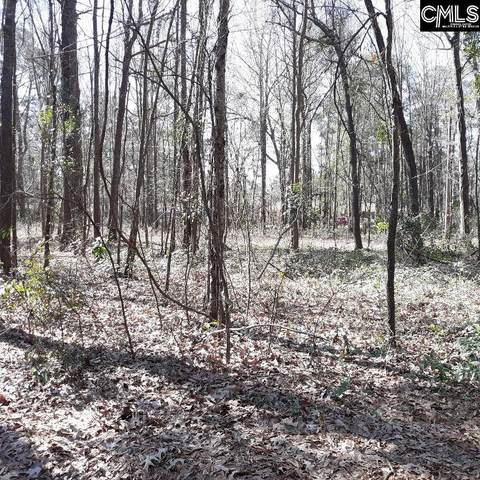 Lot 11 Charter Court Lot 11, Columbia, SC 29209 (MLS #512130) :: The Olivia Cooley Group at Keller Williams Realty