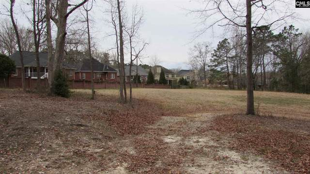 239 Old Chapin Road, Lexington, SC 29072 (MLS #512162) :: NextHome Specialists